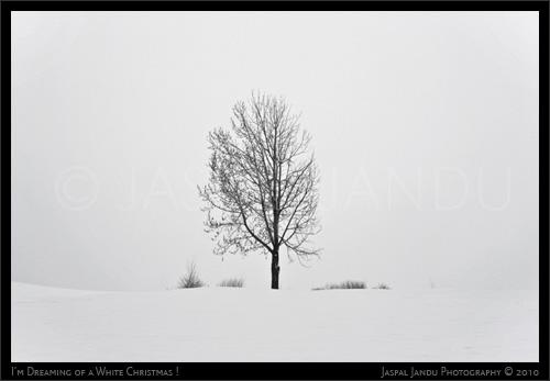 Jaspal-Jandu-Snow